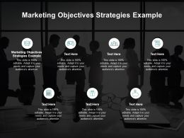 Marketing Objectives Strategies Example Ppt Powerpoint Presentation Icon Ideas Cpb