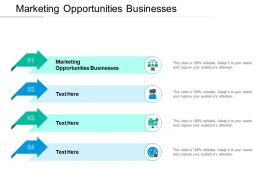 Marketing Opportunities Businesses Ppt Powerpoint Presentation Layouts Ideas Cpb