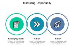 Marketing Opportunity Ppt Powerpoint Presentation Summary Model Cpb