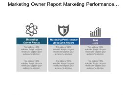 Marketing Owner Report Marketing Performance Executive Report Marketing Productivity Cpb