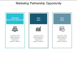 Marketing Partnership Opportunity Ppt Powerpoint Presentation Icon Rules Cpb