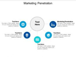 Marketing Penetration Ppt Powerpoint Presentation Show Graphics Pictures Cpb