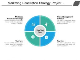 Marketing Penetration Strategy Project Management Schedule Target Marketing Strategies Cpb