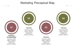 Marketing Perceptual Map Ppt Powerpoint Presentation Pictures Outfit Cpb