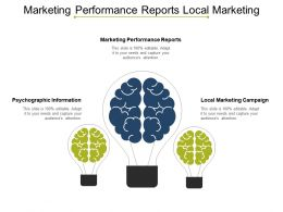 Marketing Performance Reports Local Marketing Campaign Psychographic Information Cpb