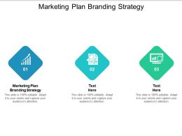 Marketing Plan Branding Strategy Ppt Powerpoint Presentation Styles Gridlines Cpb