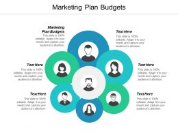 Marketing Plan Budgets Ppt Powerpoint Presentation Icon Example Topics Cpb