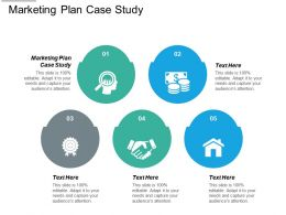 Marketing Plan Case Study Ppt Powerpoint Presentation Styles Show Cpb