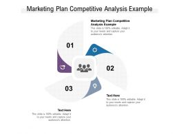 Marketing Plan Competitive Analysis Example Ppt Powerpoint Presentation Guide Cpb