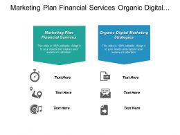 Marketing Plan Financial Services Organic Digital Marketing Strategies Cpb