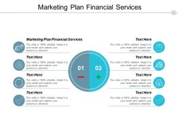 Marketing Plan Financial Services Ppt Powerpoint Presentation Pictures Examples Cpb