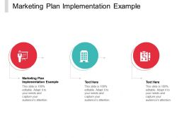 Marketing Plan Implementation Example Ppt Powerpoint Presentation Infographics Sample Cpb