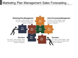 Marketing Plan Management Sales Forecasting Management Organizational Structure
