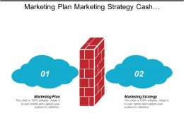 Marketing Plan Marketing Strategy Cash Management Crm Management