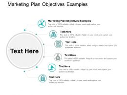 Marketing Plan Objectives Examples Ppt Powerpoint Presentation Show Graphics Design Cpb