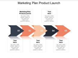 Marketing Plan Product Launch Ppt Powerpoint Presentation Gallery Professional Cpb