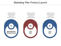 Marketing Plan Product Launch Ppt Powerpoint Presentation Pictures Example Introduction Cpb