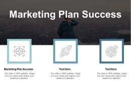 Marketing Plan Success Ppt Powerpoint Presentation Ideas Styles Cpb