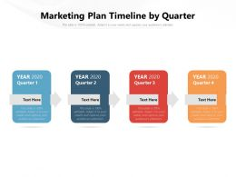 Marketing Plan Timeline By Quarter