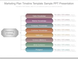 Marketing Plan Timeline Template Sample Ppt Presentation