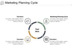 Marketing Planning Cycle Ppt Powerpoint Presentation File Outline Cpb