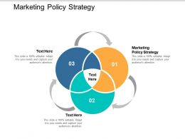 Marketing Policy Strategy Ppt Powerpoint Presentation File Ideas Cpb