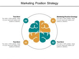Marketing Position Strategy Ppt Powerpoint Presentation File Guidelines Cpb