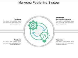 Marketing Positioning Strategy Ppt Powerpoint Presentation File Example Topics Cpb