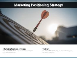 Marketing Positioning Strategy Ppt Powerpoint Presentation Layouts Vector Cpb