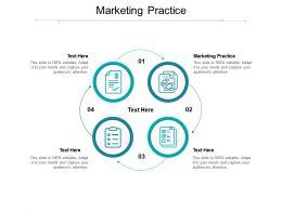 Marketing Practice Ppt Powerpoint Presentation Icon Ideas Cpb