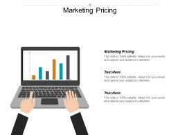 Marketing Pricing Ppt Powerpoint Presentation Gallery Infographics Cpb