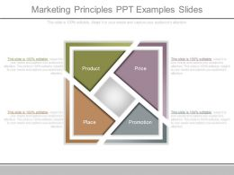 Marketing Principles Ppt Examples Slides