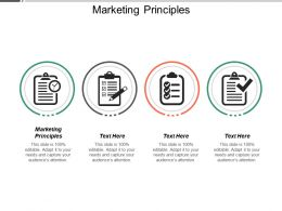 Marketing Principles Ppt Powerpoint Presentation Pictures Designs Cpb