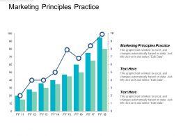 Marketing Principles Practice Ppt Powerpoint Presentation Infographics Introduction Cpb