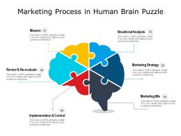 Marketing Process In Human Brain Puzzle