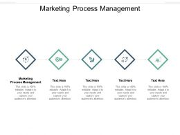Marketing Process Management Ppt Powerpoint Presentation Gallery Visual Aids Cpb
