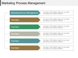 Marketing Process Management Ppt Powerpoint Presentation Layouts Example Cpb