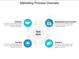 Marketing Process Overview Ppt Powerpoint Presentation Gallery Diagrams Cpb
