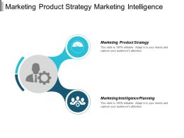 Marketing Product Strategy Marketing Intelligence Planning Responsibilities Management Cpb