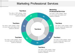 Marketing Professional Services Ppt Powerpoint Presentation Show Example File Cpb