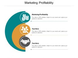 Marketing Profitability Ppt Powerpoint Presentation File Objects Cpb