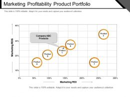 Marketing Profitability Product Portfolio Example Of Ppt