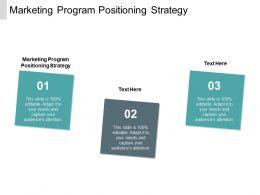 Marketing Program Positioning Strategy Ppt Powerpoint Presentation Professional Maker Cpb