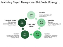 Marketing Project Management Set Goals Strategy Business Objectives