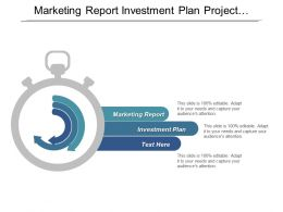 Marketing Report Investment Plan Project Management Financial Statement Analysis Cpb