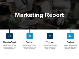 Marketing Report Ppt Powerpoint Presentation Gallery Example Cpb