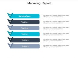 Marketing Report Ppt Powerpoint Presentation Gallery Layout Cpb