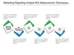 Marketing Reporting Analyst Roi Measurement Techniques Cpb