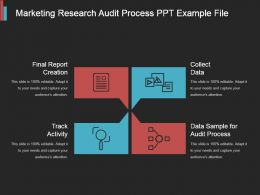 Marketing Research Audit Process Ppt Example File