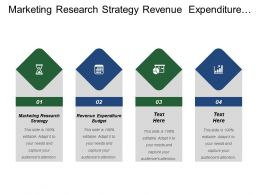 Marketing Research Strategy Revenue Expenditure Budget Market Opportunities